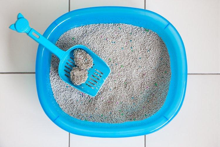 13cbcd78 Zdjęcie Brzydki zapach z obuwia? Poznaj 7 domowych sposobów na jego  usunięcie! #2